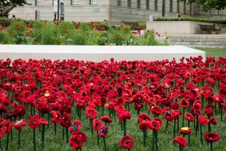dunlea-centre-Remembrance-Day