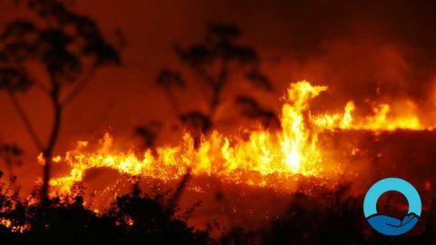Bushfire_Closure_2019